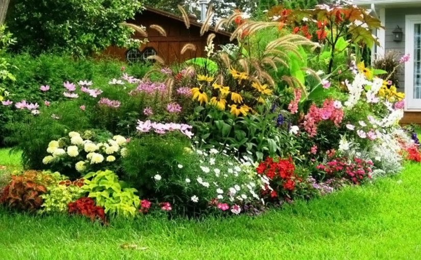 Enhance The Look Of Your Panorama With Industrial Landscaping Specialists